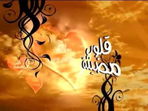 قلوب مضيئة – د. عبدالحميد القضاة