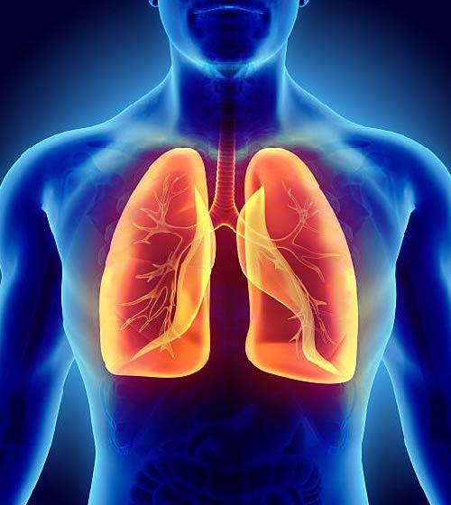 آيـات الرحمـن في تنفس الإنسان